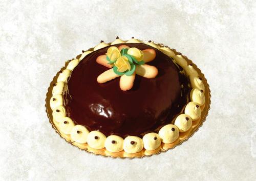 CANNONATA - Base di pan di spagna farcito con uno strato di panna-zabaione ed uno strato di nutella, glassata con ganache al cioccolato